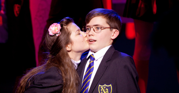 Review: ★★★★ The Secret Diary Of Adrian Mole aged 13 and 3/4, Ambassadors Theatre